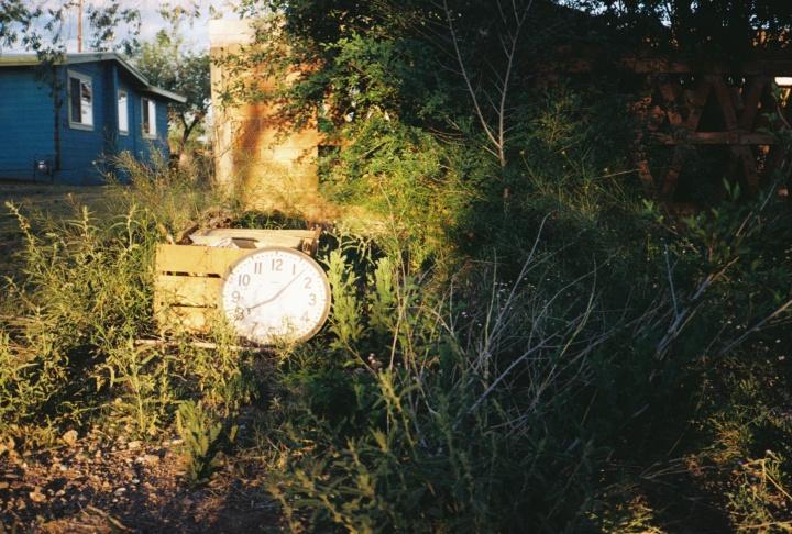 clock in the garden