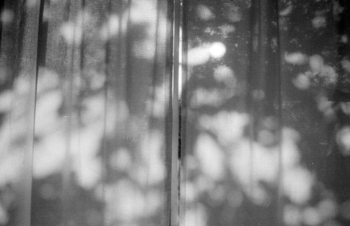 curtain in daytime